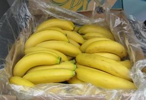 Wieviel sind sieben Tage auf dem Rad in Bananen?